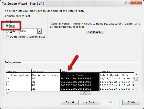 Text Import Wizard with Text selected and arrow pointed to the highlighted text column.